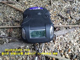 20111029トンボの水辺 地表